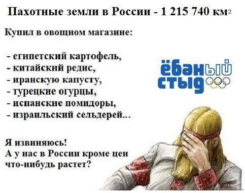 1442149761-99fa93cd541c662912325564bae7c403